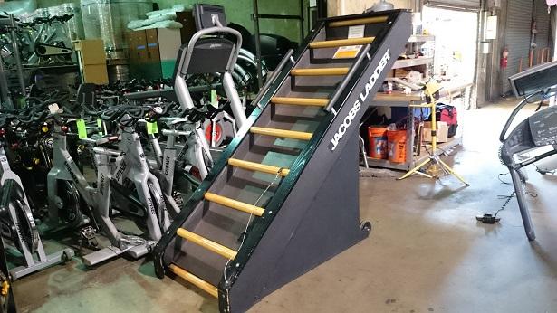Jacob's Ladder Cardio Machine 1