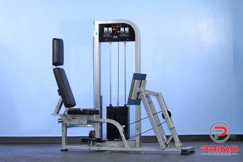 Leg Press/Calf Raise Combo