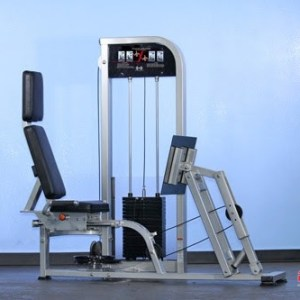 Leg Press/Calf Raise Combo
