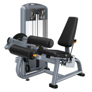 Precor Discovery Series Selectorized Seated Leg Curl