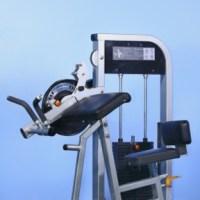 Biceps/Triceps Combo Machine (Brand New)