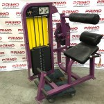 Life Fitness Pro2 Back Extension (11865)