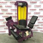 Life Fitness Pro2 Leg Extension (11895)