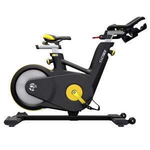 Cybex IC 4 Indoor Cycle