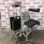 Life Fitness Pro1 Low Back Extension