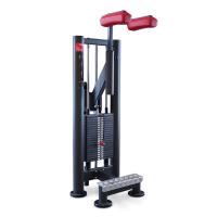Panatta SEC Calf Machine