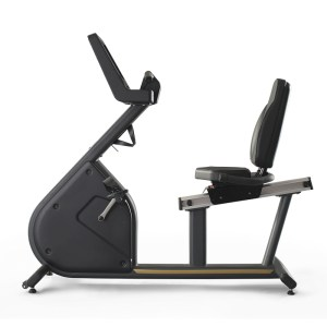 Horizontal Bike Fenix Touch 1FXT002