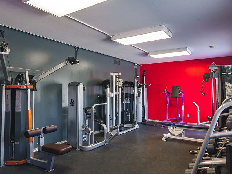 Gym-remodel
