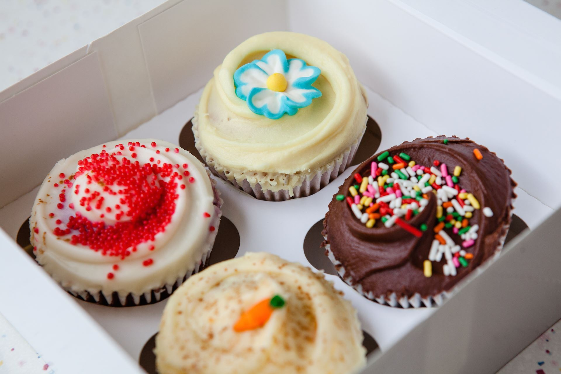 4 Regular Cupcakes