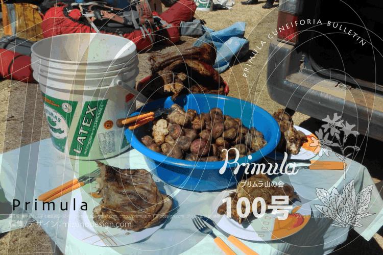 プリムラ100号は、2015年12月2日に発行しました。