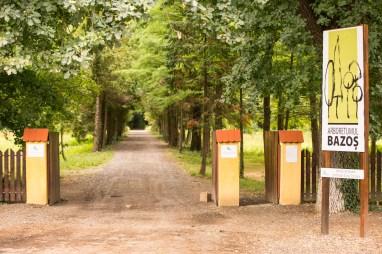 Parcul Dendrologic Bazoş