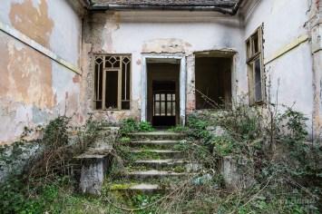 Vila 1 Poieni