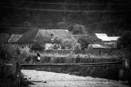 Satul Poieni