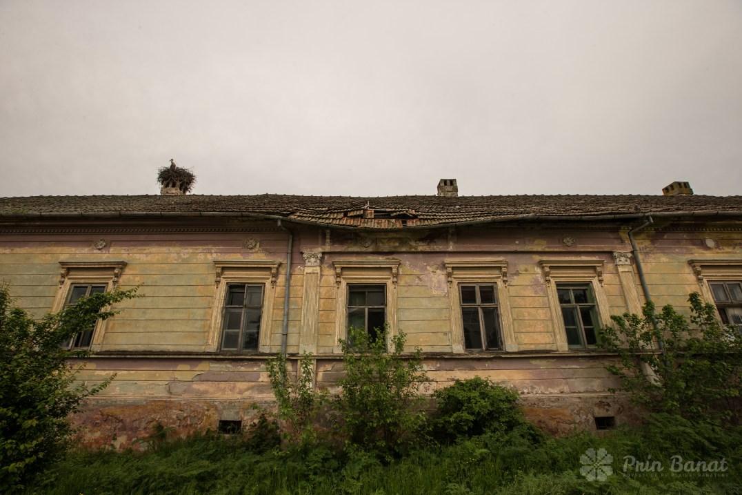 The Damaszkin mansion from Beregsău Mic