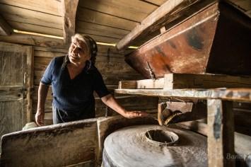 Servant at the Firiz watermill
