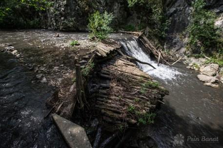 Die Wassermühlen aus Rudăria