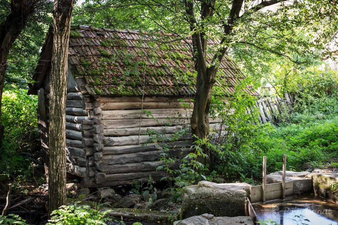 Watermill in Putna (2)