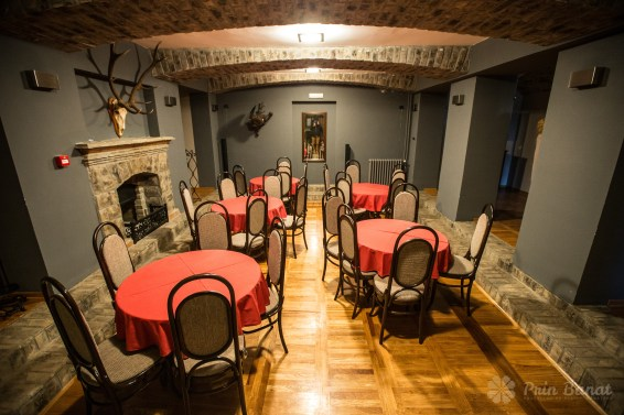 Banaterra Castle - the hunting room