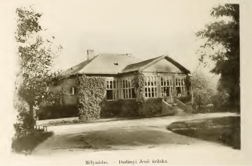 Conacul Dadányi din Nadăş la începtutul anilor 1900. Sursă foto: Samu Borovszky - Magyarország Vármegyéi és Városai. Encziklopédiája: Temes Vármegye, Budapesta, Országos Monografia Társaság, 1914.