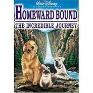 Homeward Bound Journey released in 1993