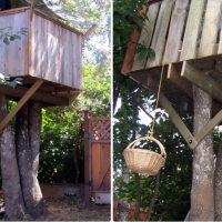 Get creative In Quarantine! Why not build a treehouse with your Family?