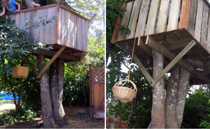 Tree House Guide