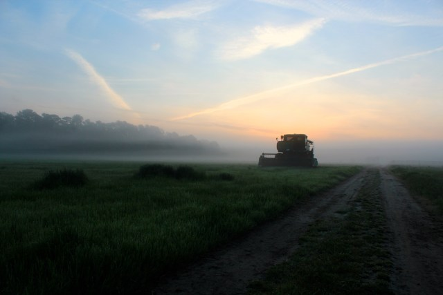 A field in Pungo at dawn on April 19, 2015. [Photo by John-Henry Doucette/The Princess Anne Independent News]
