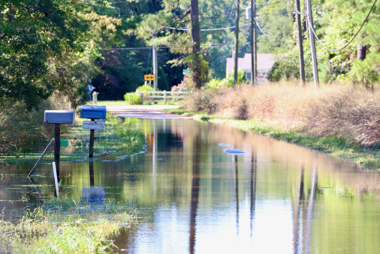 Flooding: Back Bay marsh restoration a focus among southern Virginia Beach projects in referendum