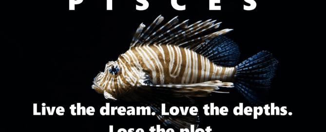 Live the dream with pisces tagline fish stuffs