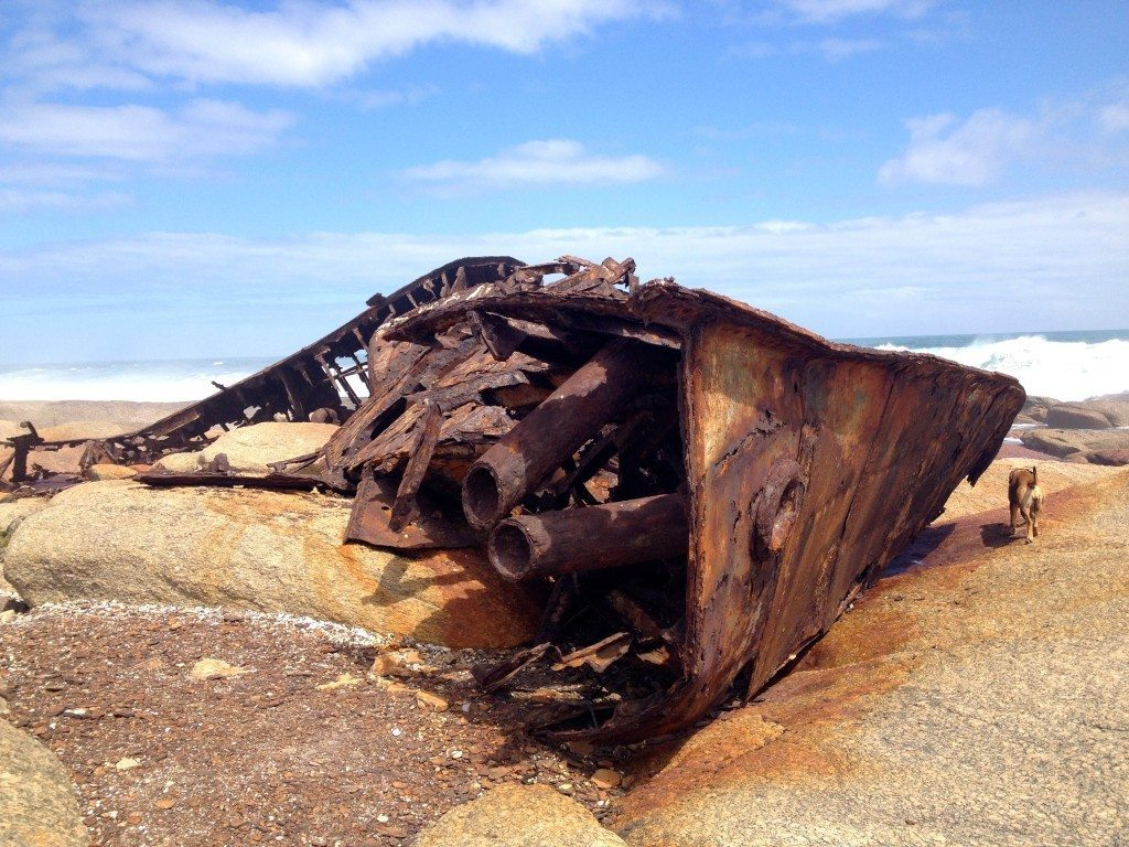 Aristea shipwreck | west coast road trip