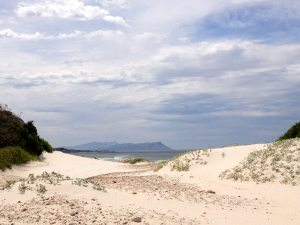 White Sand Dunes | November travel blog update