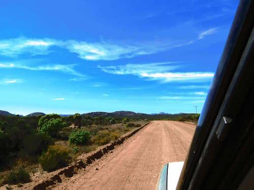 lush road | Van Life