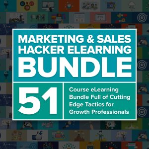 Marketing & Sales Elearning Course