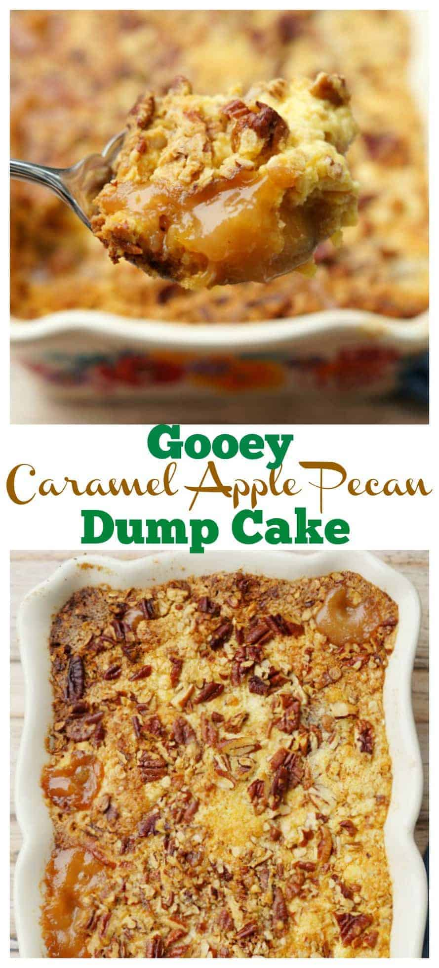 This gooey Caramel Apple Dump Cake Recipe with delicious pecans is light on ingredients but big on flavor! This easy dessert recipe will be the only apple recipe you need all fall long!