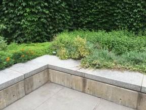Frist Garden/Mint Forrest - Lindsey Conlan, Photo