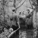 Vojna bolnica u močvari
