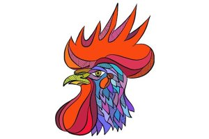 rooster-head-side-dwg_prvw-