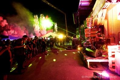 Tongue Tied Twin @ One Burning Man Schötz © 26.08.2017 Patrick Principe