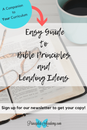Principle Approach Method, Classical Education, Principled Academy, Easy Guide to Teaching Bible Principles and Leading Ideas