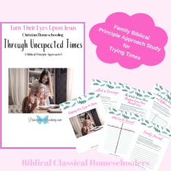 Turn Their Eyes Upon Jesus, Christian Homeschooling, Bible Principles, Principle Approach, Homeschooling, Biblical Principles, Family Bible Study