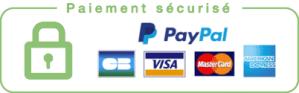 Mode de paiements acceptés dans le footer
