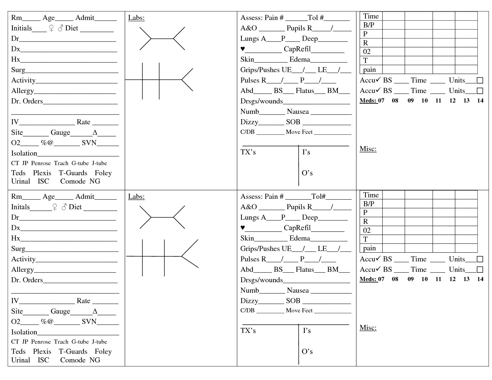 The Ultimate Nursing Brain Sheet Database 33 Nurse Report