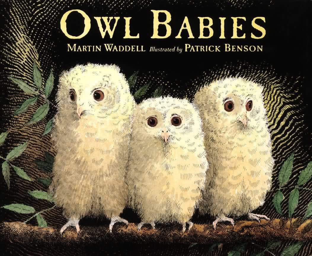 Owl Babies Great Children S Book About Three Owlet