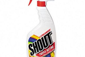 Save With $0.50 Off Shout Stain Remover Coupon!