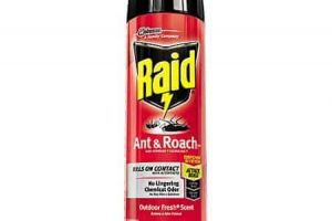 Save With $0.55 Off Raid Products Coupon!