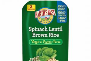 Earth's Best Baby Food Pouches On Sale, Only $0.27 at Target!