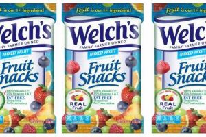 Save With $1.00 Off Two Welch's Fruit Snacks Coupon!
