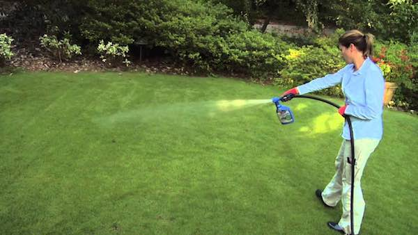 Bayer Advanced Lawn Care Products Printable Coupon
