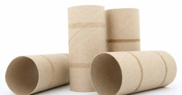 Empty Paper Product Rolls Bath Tissue Image