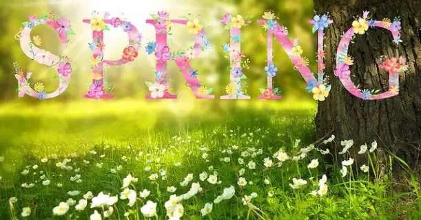 Spring Time Image